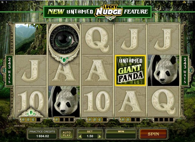 Untamed Giant Panda Pokie